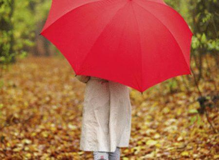Осенняя прогулка с детьми